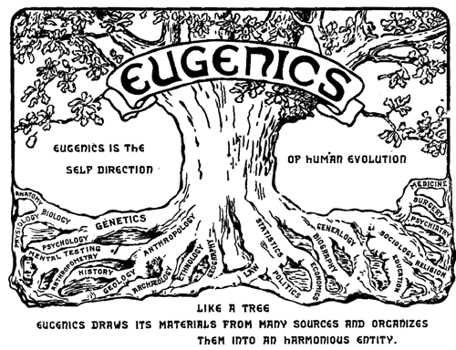 NIP image- eugenics- 12-18-14