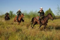 """""""South Texas, Border Patrol Agents, McAllen Horse Patrol Unit"""" by US Customs and Border Protection. Photographer: Donna Burton"""