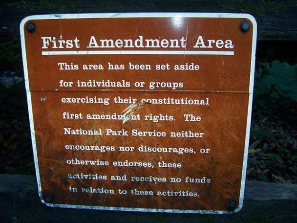 """First amendment area Muir Woods"" by Brandt Luke Zorn"